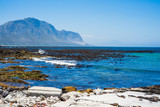 sea view at betty bay coastline,south africa - 195708360