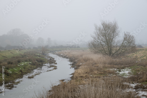 Foto op Canvas Cappuccino Cold misty Winter landscape over stream in English countryside