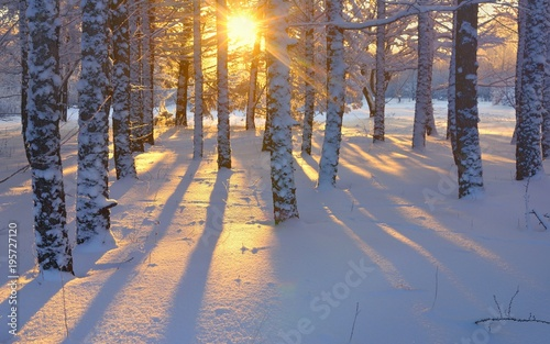 Papiers peints Morning Glory Sunrise in winter