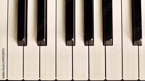 Piano key - 195728973