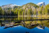 Nymph Lake, Rocky Mountains, Colorado, USA.