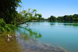 Lake water and sun