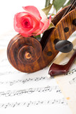 Close view of violin scroll, bow and red rose - 195739773