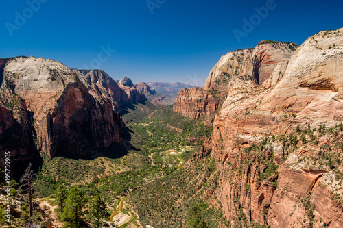 Poster Zalm Landscape in Zion National Park