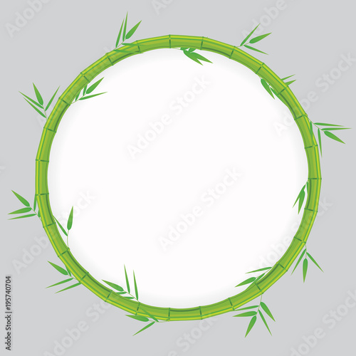 Fototapeta Green bamboo background. Vector illustration