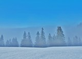 Winterlandschaft zwischen Sonne und Nebel - 195744560