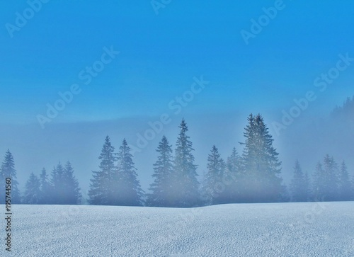 Zimowy krajobraz między słońcem i mgłą