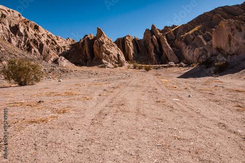 Fotobehang Zalm landscape near cafayate salta region