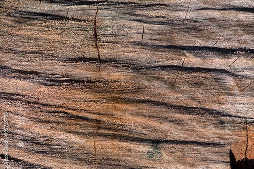 Assi Di Legno Grezze : Asse di legno grezzo buy photos ap images detailview