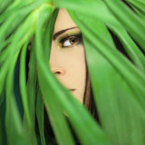 beautiful woman looking through jungle palm leaves, perfect skin and perfect make up, studio portrait in green - 195761583