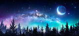 Milky Way And Moon In Night Forest - 195776548