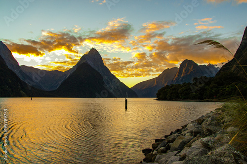 Foto op Canvas Honing milford sound