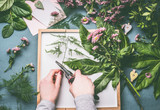 Female florist hands with scissors making floral arrangements flowers and green leaves on white tray , top view - 195830576