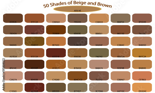 Shades Of Brown Color Isolated On White Background Tones And Backgrounds