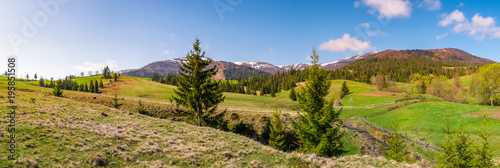 panorama of mountainous landscape in springtime. lovely scenery with spruce trees on grassy hillsides. mountain ridge with snowy peaks in the distance - 195851508
