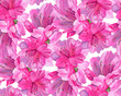 Watercolor flowers. Bright pink azaleas. - 195854922