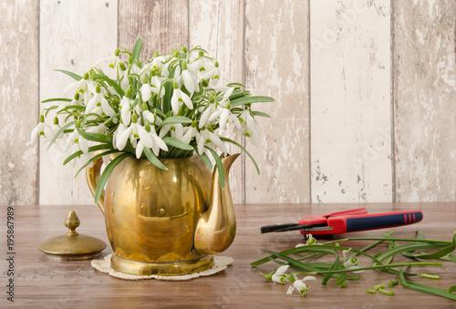 Fototapeta Schneeglöckchen in Vase
