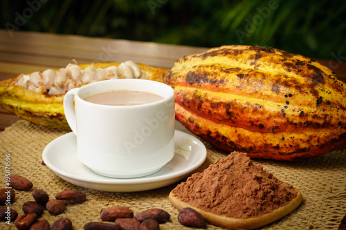 Fotobehang Chocolade Hot chocolate drink, raw cocoa fruit, cacao beans, powder