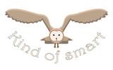 Kind of smart owl idiom, vector