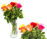 roses in vase isolated on white - 195877964