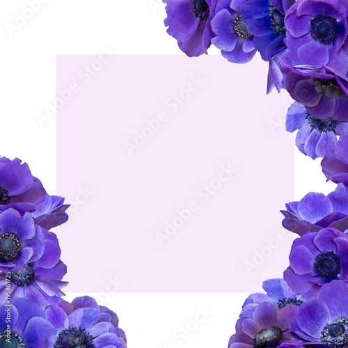Violet Anemone bouquet with frame