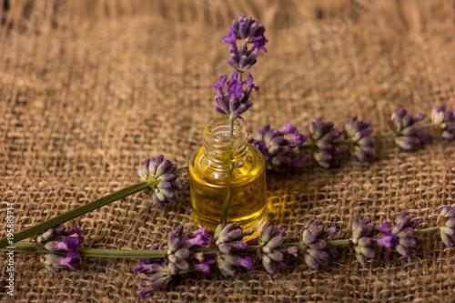 Fototapeta Bottle of lavender oil and bunch of lavender flowers