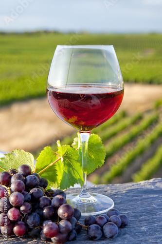Francja> Anjou> Winnica> Czerwone wino