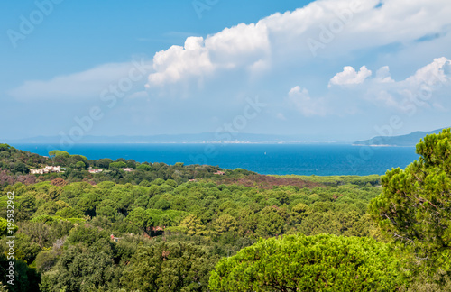 Aluminium Blauw Landscape of sea with blue water, trees and clouds, Tuscany, Italy