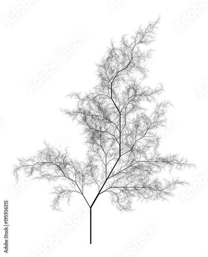 Flat   Computer Generated Self-Similar L-system Branching Tree Fractal  - Generative Art - 195936315