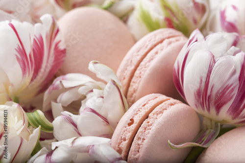 Cake macaron or macaroon and tulips, pastel colors, soft focus Poster