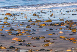 Scattered colorful stones cover the beach at South Carlsbad State Beach in San Diego, California. - 195945989