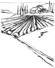 Farm Hills Drawing. Landscape sketch. Field and house. © pylypchuk25