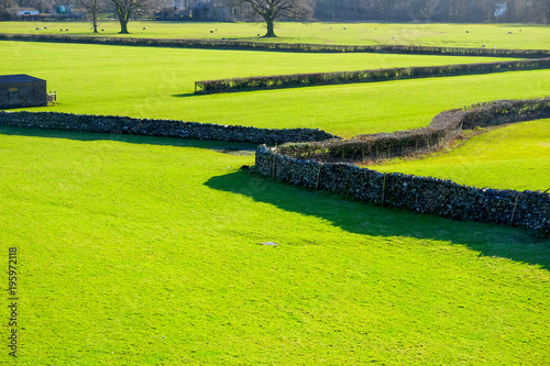 Keuken foto achterwand Lime groen a pattern of bright green empty grazing fields with short grass broken up by graphic patterns of dark stone walls and short black hedges