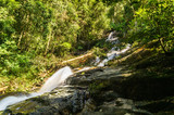 scenery of tropical forest waterfall