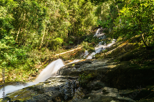 scenery of tropical forest waterfall - 195973122