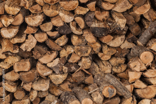 Tuinposter Brandhout textuur stack of firewood logs