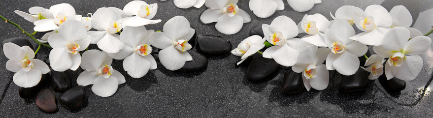 White orchids flowers and spa stones . © Swetlana Wall