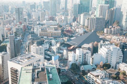 Tuinposter Tokio Tokyo downtown area