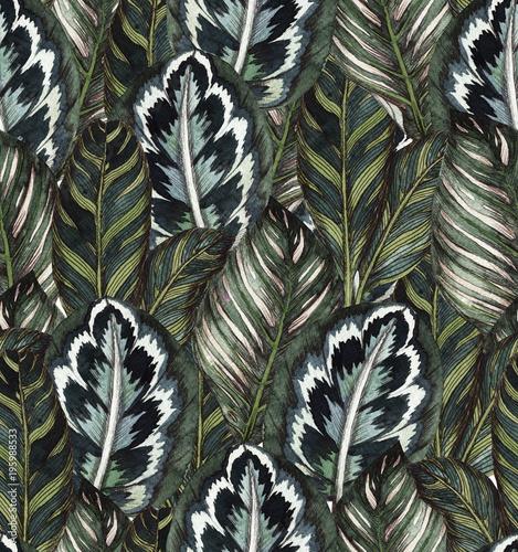 Tropikalny wzór liści tropikalnych