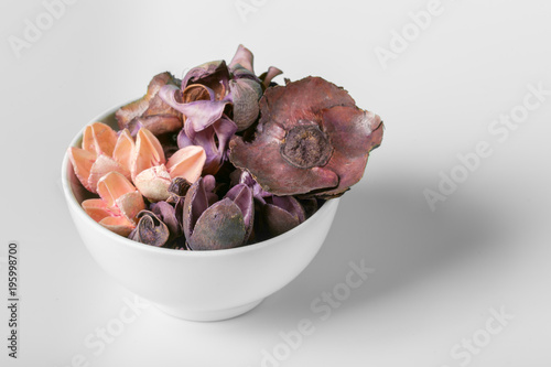 Foto op Canvas Natuur set of dry autumn plants and leaves, dried petals and flowers, simple rustic branches and wheat bunch on white