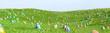 Leinwanddruck Bild - Bunte Ostereier zu Ostern im Gras einer Wiese