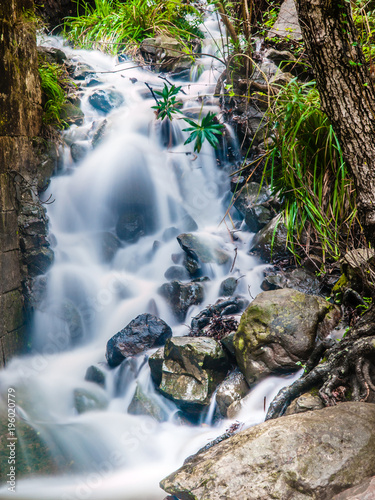 waterfall, cascade of a mountain river