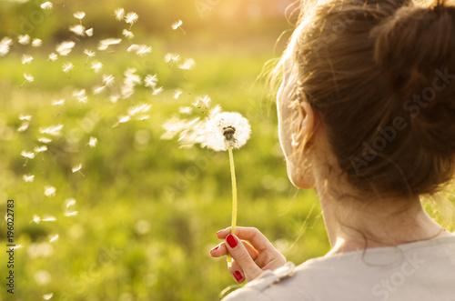 Fototapeta Woman blowing dandelion