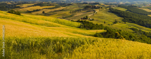 Tuscan landscape, fields and meadows on a warm sunny day  - 196036534