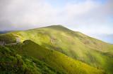 Foggy landscape on Paul da Serra plateau, Madeira, Portugal - 196046324
