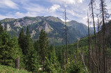 View in Tatra mountains from way to lake Eye of sea.
