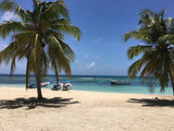 Sandstrand mit Palmen und Booten von der Insel Saona in der Dominikanischen Republik - 196055734