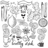 Spicy tea. Vector illustration with isolated elements of ingredients. Black outlines set on a white background. - 196080113