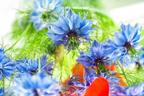 Tuinposter Klaprozen Cornflower in the bouquet