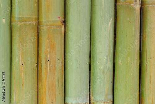 Fotobehang Bamboe bamboo wall background texture pattern brown nature garden house wallpaper line